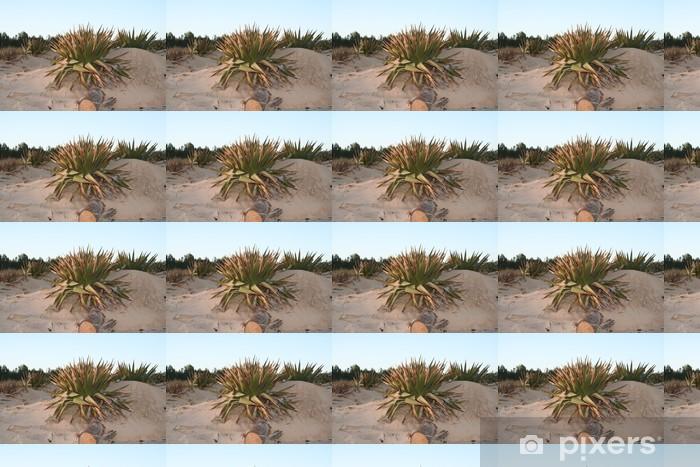 Papier peint vinyle sur mesure Yucca sauvage dans les dunes de sable - Plantes