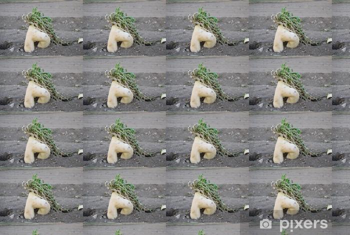 Tapeta na wymiar winylowa [Japonia] Fukushima erotyczne rzodkiewki (rozwidlony rzodkiewka) - Azja