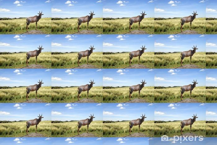 Tapeta na wymiar winylowa Kuhantilope Park Narodowy Masai Mara - Afryka