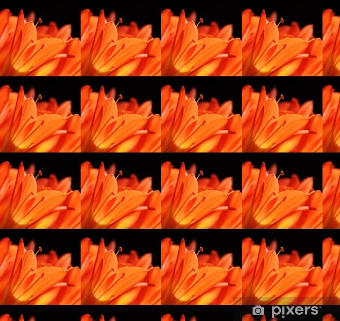 Tapeta na wymiar winylowa Clivia tropikalny kwiat makro - Kwiaty