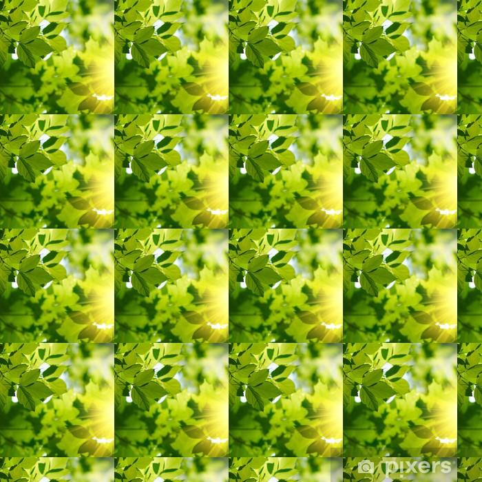 Papier peint vinyle sur mesure Les feuilles vertes avec rayon de soleil - Thèmes
