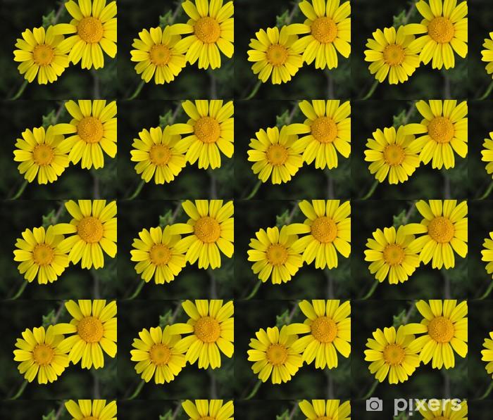 Vinyltapete nach Maß Gelben Gänseblümchen - Fröhlichkeit