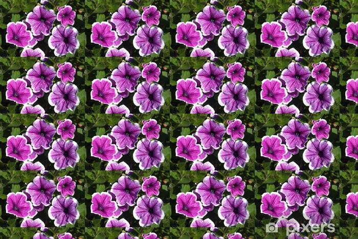 Tapeta na wymiar winylowa Petunias - Kwiaty
