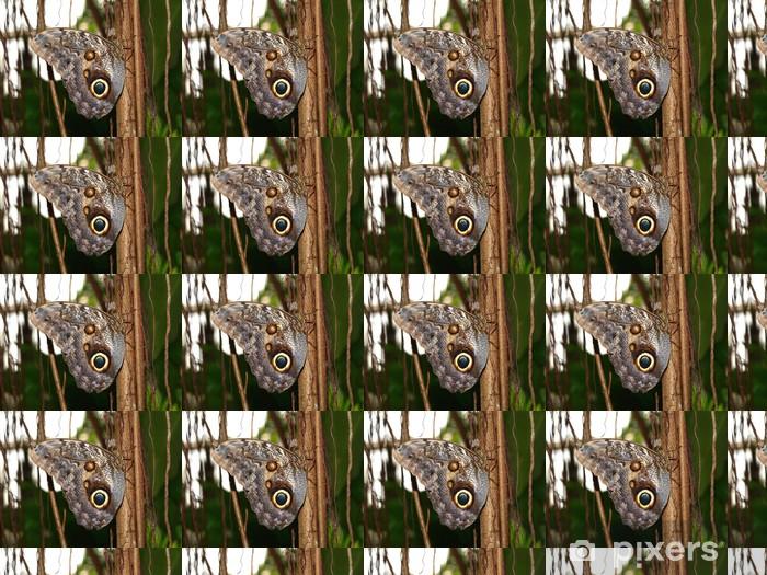 Papier peint vinyle sur mesure Papillon exotique dans la forêt tropicale - Autres Autres