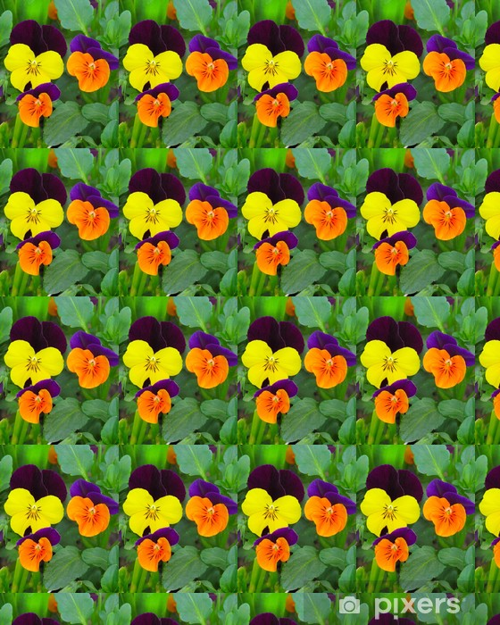 Papier peint vinyle sur mesure Hornveilchen - Fleurs