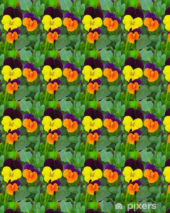 Vinyltapete nach Maß Hornveilchen - Blumen