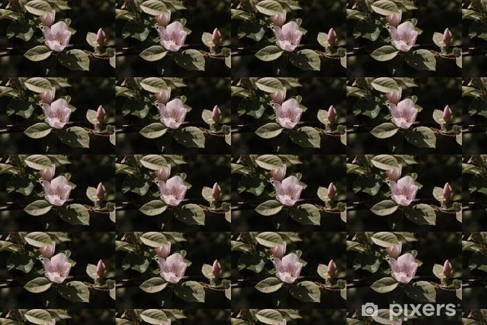 Vinylová tapeta na míru Lístků - Květiny