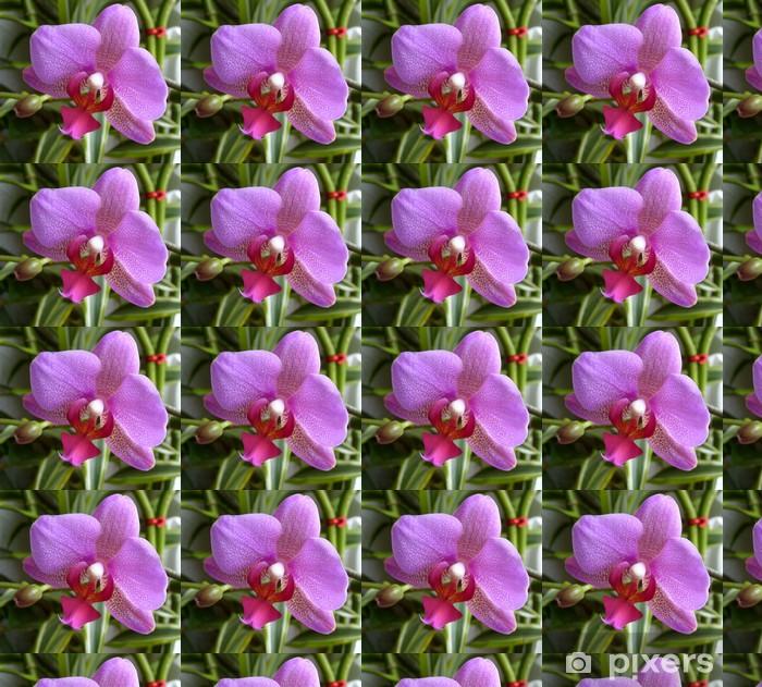 Vinyltapete nach Maß Orchidee - Blumen
