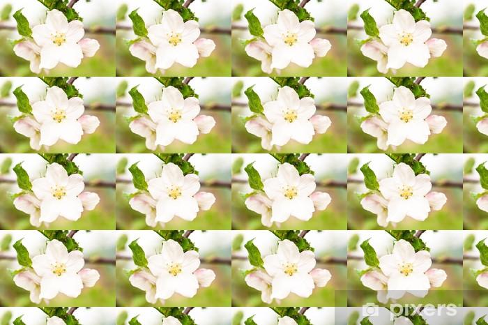 Papier peint vinyle sur mesure Apple tree flower closeup - Maisons et jardins