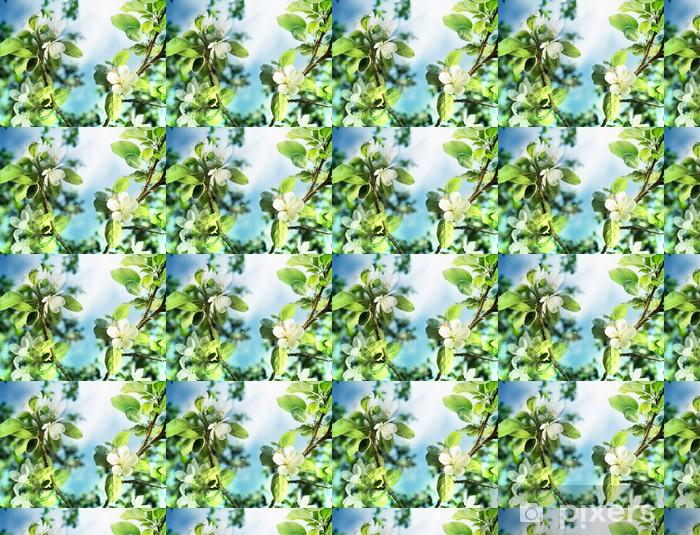 Papier peint vinyle sur mesure Printemps Apple Blossom sur le ciel bleu - Saisons