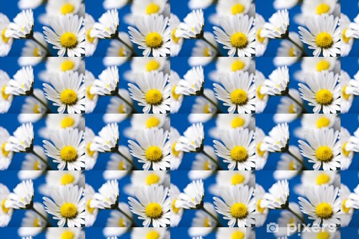 Papier peint vinyle sur mesure Marguerite - Fleurs