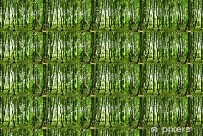 Papier peint vinyle sur mesure Vert et foret - Forêt
