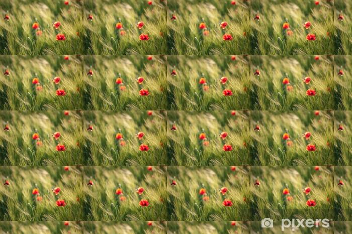 Vinyl behang, op maat gemaakt Rode papavers op groene tarwe veld in een winderige dag. - Vrede
