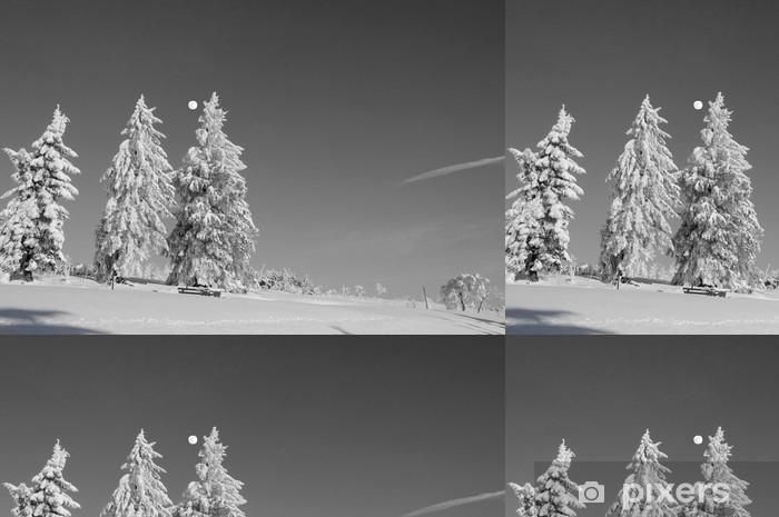 Vinylová Tapeta Schwarzwald im Winter schwarz / weiss - Roční období