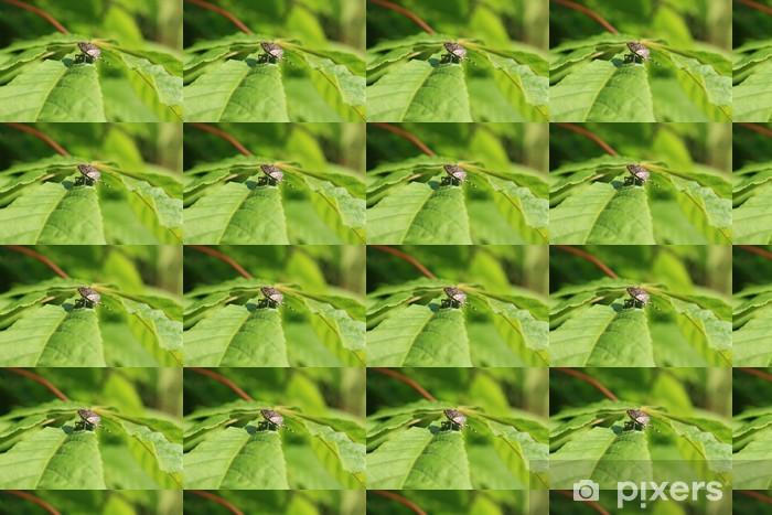 Papel pintado estándar a medida Escarabajo - Otros Otros