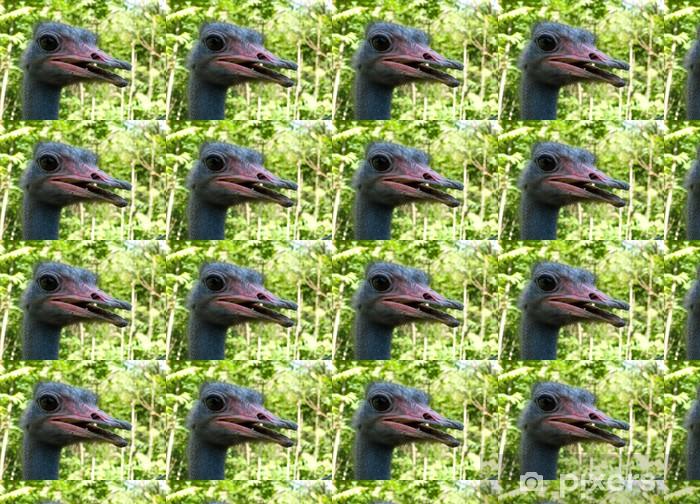 Tapeta na wymiar winylowa Struś - Ptaki