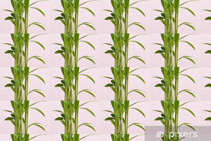 Papier peint vinyle sur mesure Plante de bambou fraîches - Saisons