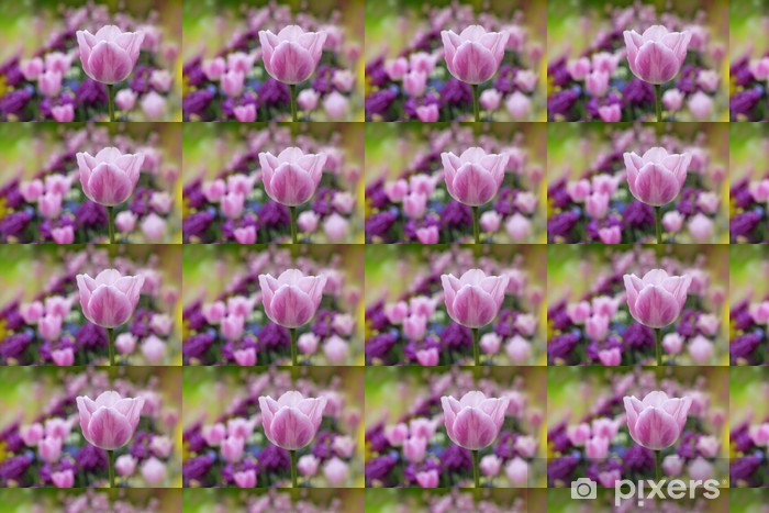 Vinylová tapeta na míru Tulipány - Roční období