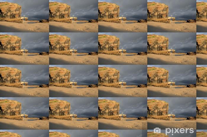 Las Catedrales beach. Ribadeo, Spain Vinyl custom-made wallpaper - Water