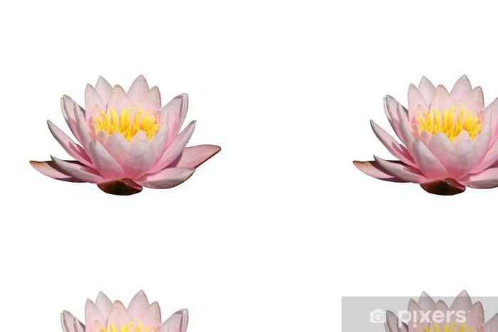 Tapete Fleur De Lotus Pixers Wir Leben Um Zu Verändern