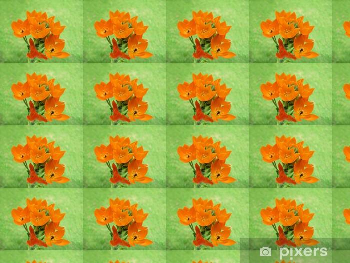 Tapeta na wymiar winylowa Milchstern - Kwiaty