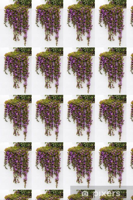Tapeta na wymiar winylowa Iceplant Delosperma cooperi spływu w dół białą ścianę w Cala d - Kwiaty