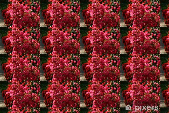 Tapeta na wymiar winylowa Bugenwilli - Kwiaty