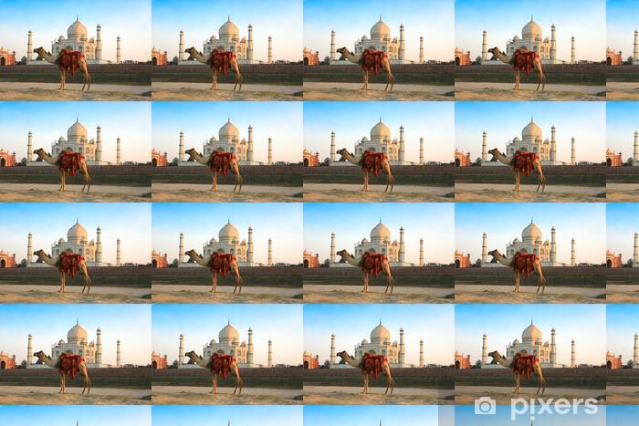 Papier peint vinyle sur mesure Camel en face du Taj Mahal - Asie