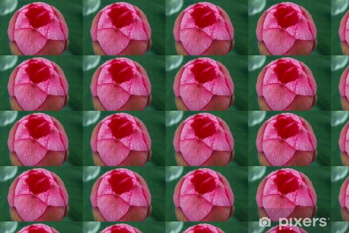 Vinylová tapeta na míru Lotus (Tokyo, Ueno medvěd bazén) - Květiny