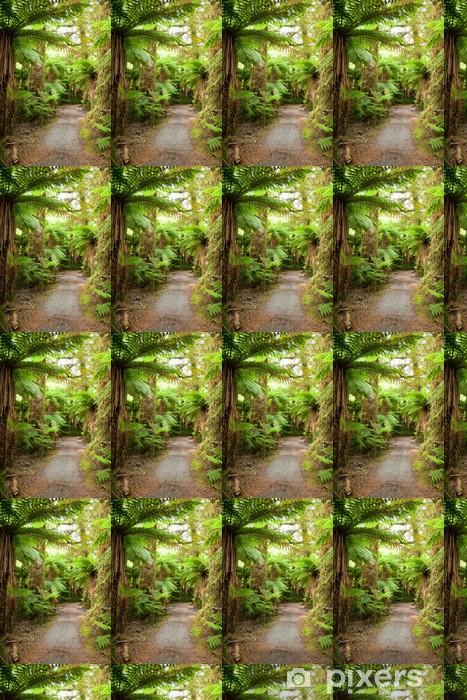 Papier peint vinyle sur mesure Chemin de Rainforest - Thèmes