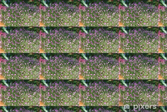 Papier peint vinyle sur mesure Schleierkraut rosa (Gypsophila muralis) - Maisons et jardins