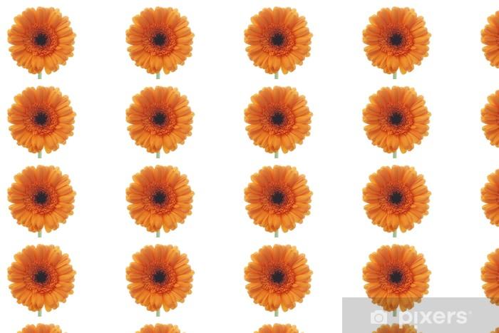 Tapeta na wymiar winylowa Gerbera - Kwiaty