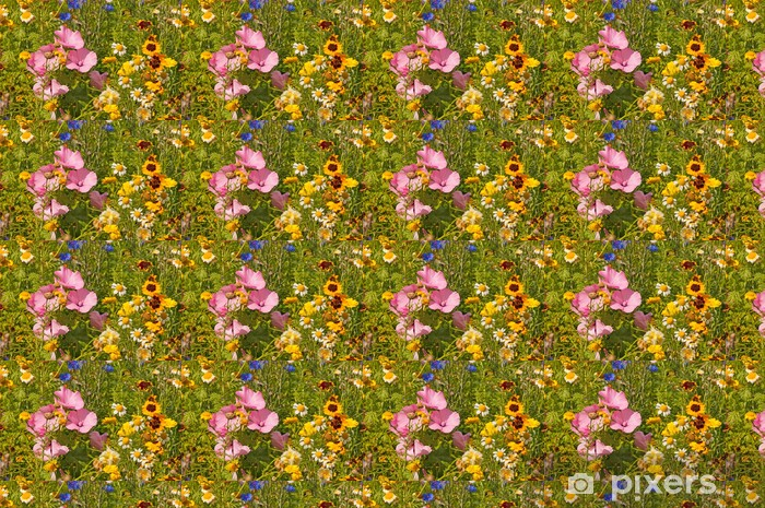 Tapeta na wymiar winylowa Kolorowy kwiat łąka - Kwiaty