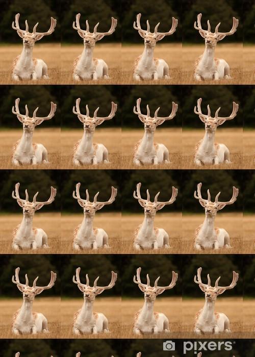 Tapeta na wymiar winylowa Jelenie z poroża jelenia siedzący - Tematy