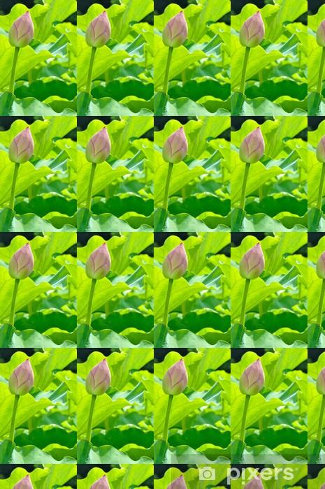 Tapeta na wymiar winylowa Pączek lotosu - Kwiaty