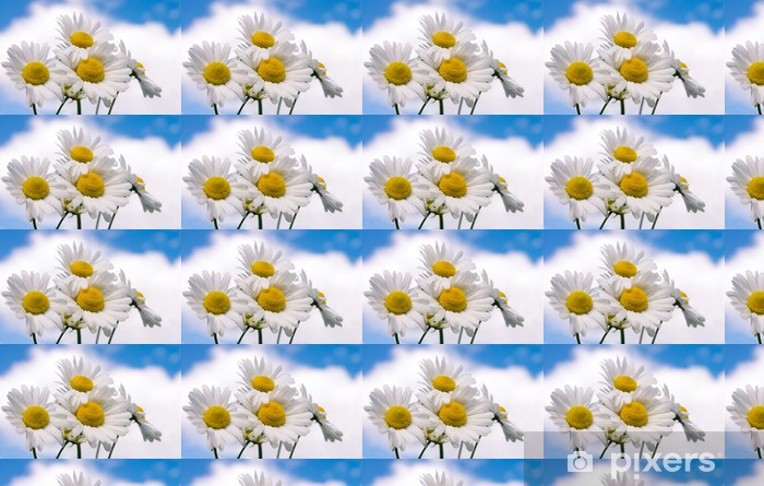 Papier peint vinyle sur mesure Fleurs de camomille sur large champ - Fleurs