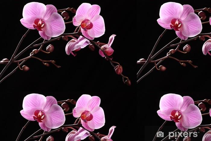 Vinyl Behang Orchidea - Bloemen