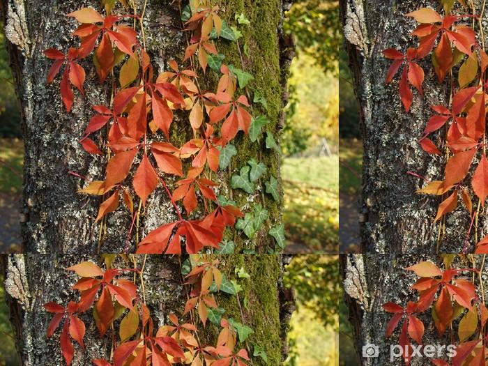 Tapete Zweifarbig Bewachsener Baumstamm Pixers Wir Leben Um Zu