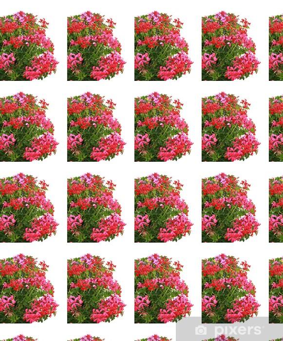 Tapeta na wymiar winylowa Bluszcz geranium różowe i czerwone - Kwiaty