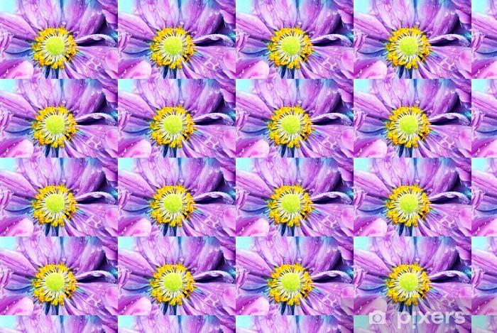 Tapeta na wymiar winylowa Kolorowe stokrotka z kroplami deszczu - Kwiaty