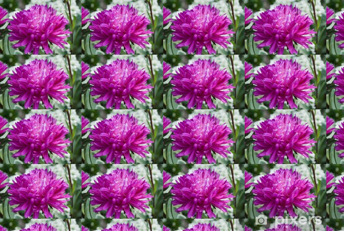 Tapeta na wymiar winylowa Kwiat - Kwiaty