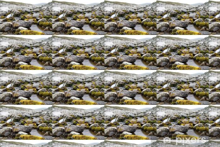 Tapeta na wymiar winylowa Górski potok w Sarek Parku Narodowego, w Szwecji - Europa