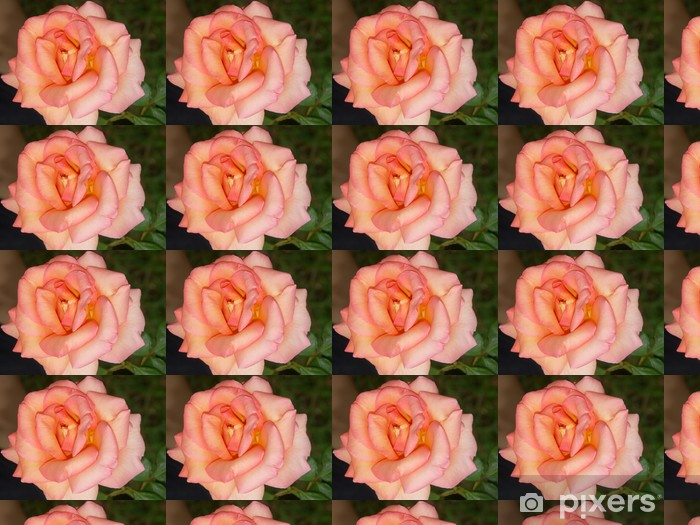 Tapeta na wymiar winylowa Różowy kwiat - Tematy