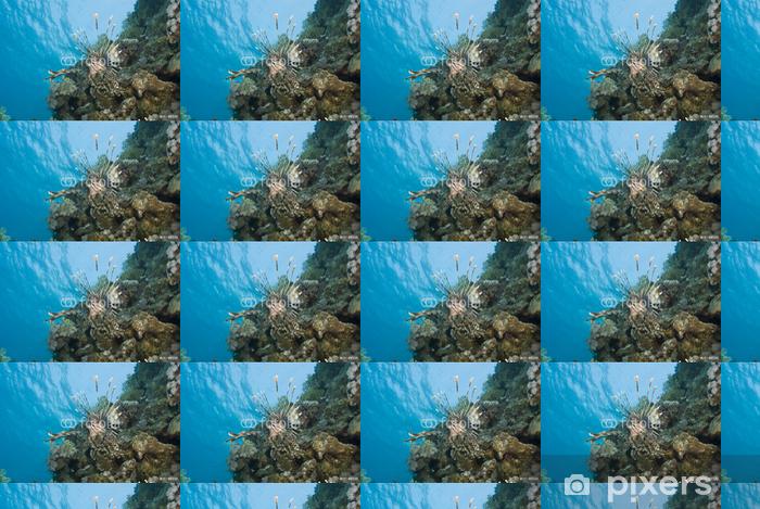Papier peint vinyle sur mesure Lionfish commune ostentation ses nageoires ornées. - Animaux marins