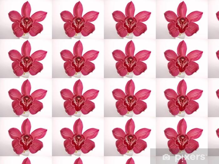Tapeta na wymiar winylowa Orchidea - Kwiaty