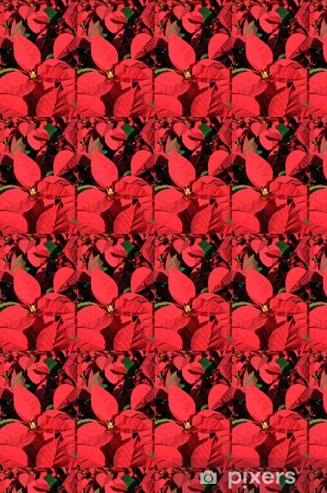 Vinyl behang, op maat gemaakt Rode poinsettia bloemen close-up - Internationale Vieringen
