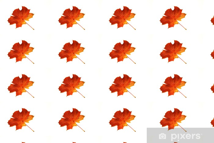 Ahornblatt im Herbst Vinyl custom-made wallpaper - Seasons