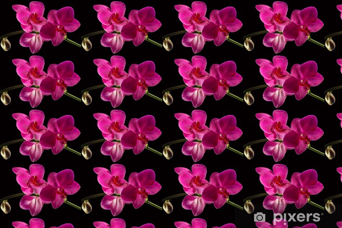 Pink Orchid On Black Wallpaper Vinyl Custom Made