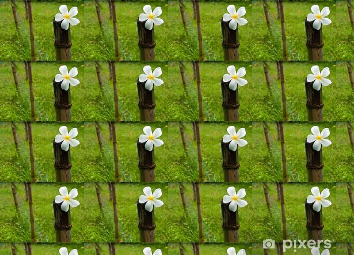 Tapeta na wymiar winylowa Białe kwiaty Plumeria umieszczone na bambus - Kwiaty