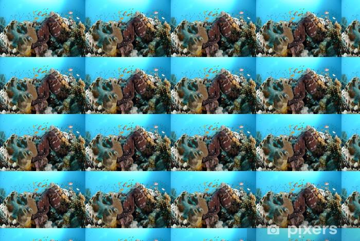 Papier peint vinyle sur mesure Poulpe de récif commune - Animaux marins